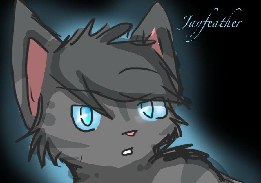 Warrior Cats Jayfeather Jayfeather  3 - warrior-cats