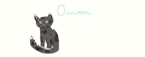 My tagahanga Character, Owlpool