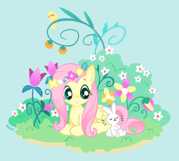My Little Pony Pictures