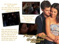 pacey-and-joey - Pacey * Joey wallpaper