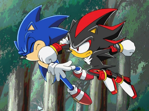 SONIC THIS IS WHAT YOU GET FOR SAYING I WEAR MAKE-UP!!! - shadow-the-hedgehog Photo