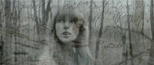 Safe and Sound quote - taylor-swift Fan Art