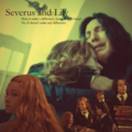 Severus and Lily does it make a difference being muggle born ? No. It doesn't make any difference - severus-snape-and-lily-evans fan art