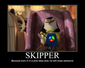 Skipper Motivational Poster