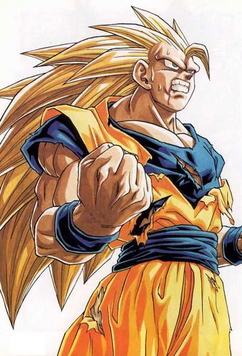 Super Saiyan 3 Goku!