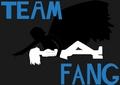 Team Fang