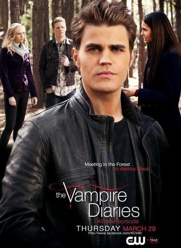 The vampire diaries poster 3x17 <33
