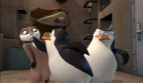 Penguins of Madagascar images Uhm, Private? HD wallpaper and background photos