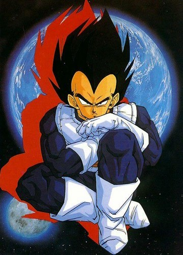 VEGETA Prince os the Saiyans