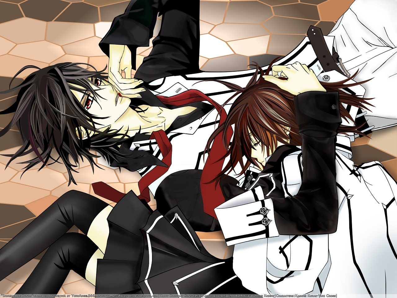 vampire knight wallpaper - photo #7
