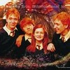 The Weasley Family photo entitled Weasley