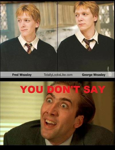 Wakflood, Les Conneries D'Internet - Page 20 You-don-t-say-harry-potter-29832425-401-520