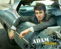 adam <3