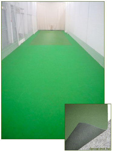 indoor cricket net - indoor-cricket-and-outdoor-cricket Photo