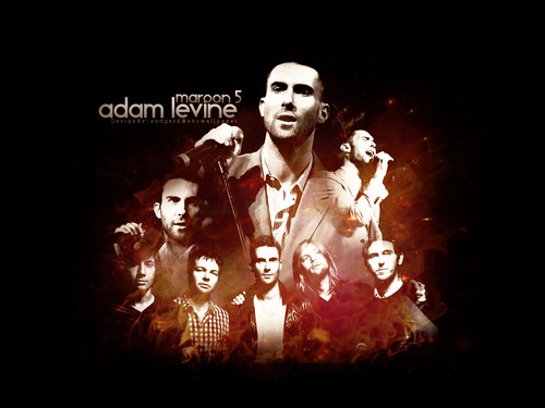 Adam Levine wallpaper with a concert called :)