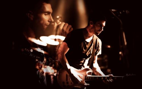 Adam Levine 壁紙 with a コンサート entitled Adam Levine