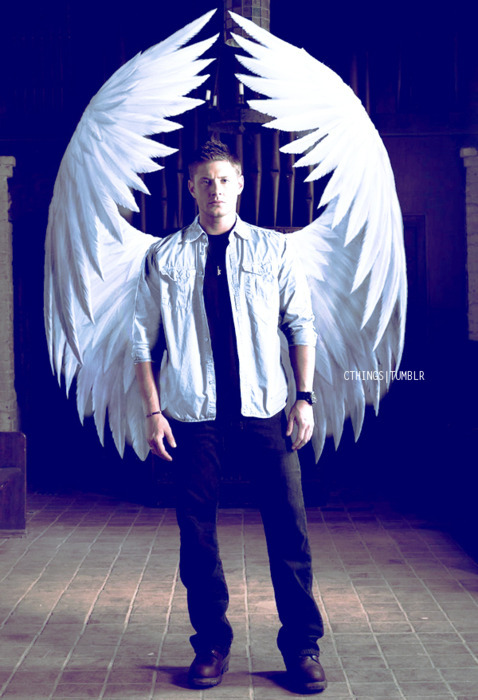 Mobile Apps Fan on | Winchester supernatural, Supernatural ... |Supernatural Dean Angel