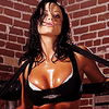 Candice Michelle تصویر probably containing attractiveness and a lingerie called Candice Michelle