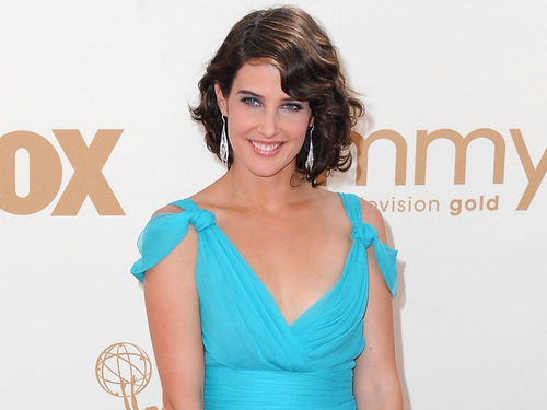 Cobie Smulders - cobie-smulders Wallpaper
