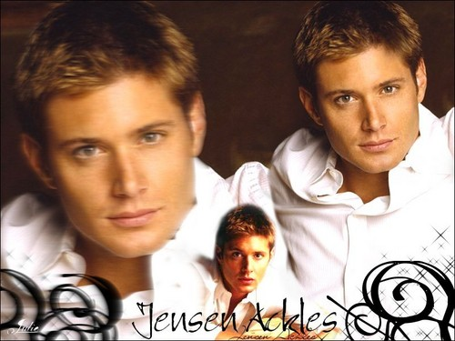 スーパーナチュラル 壁紙 containing a portrait titled Dean / Jensen