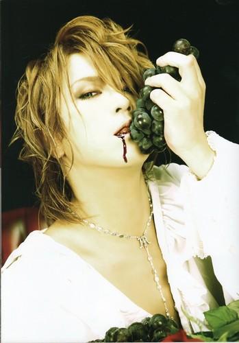 Kamijo World Official Photobook