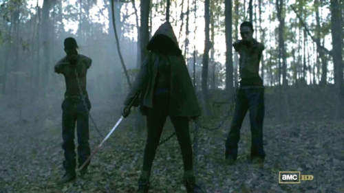 Michonne  - the-walking-dead Photo