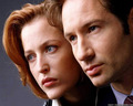 Mulder & Scully - the-x-files wallpaper