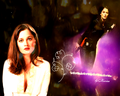 Robin Tunney // Teresa Lisbon - the-mentalist wallpaper