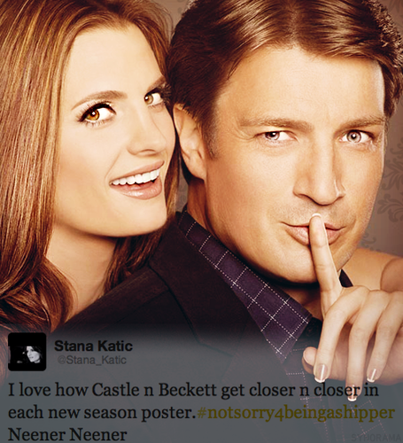 Stana's Interesting Tweet :3