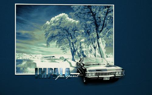 The Impala ♥