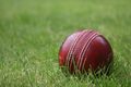 cricket ball - indoor-cricket-and-outdoor-cricket photo