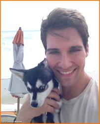 james with zorro, fox