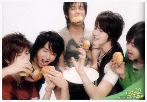 SS501 wallpaper with a bearskin entitled ss501