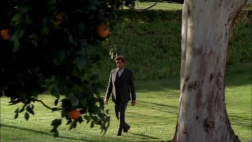 The Mentalist fond d'écran possibly containing a beech and a live oak called 1x23- Red John's Footsteps