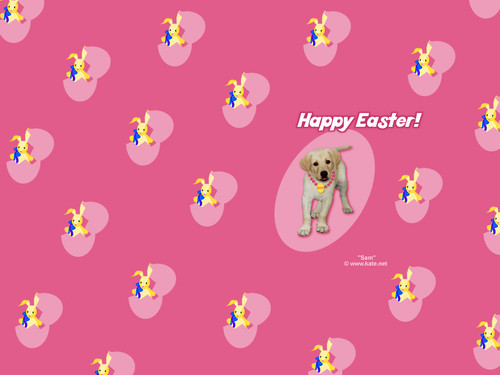 Happy Easter All My fan wallpaper called Easter