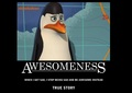 Kowalski = Awesomeness [ By: ___Sophie___ ]  - penguins-of-madagascar photo