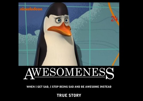 Kowalski = Awesomeness [ By: ___Sophie___ ]