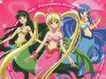 Mermaid Melody - mermaids-heaven wallpaper