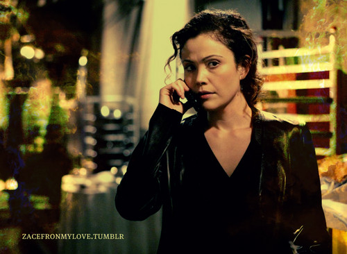 24 wallpaper called Michelle Dessler