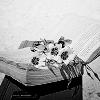 membaca foto titled membaca