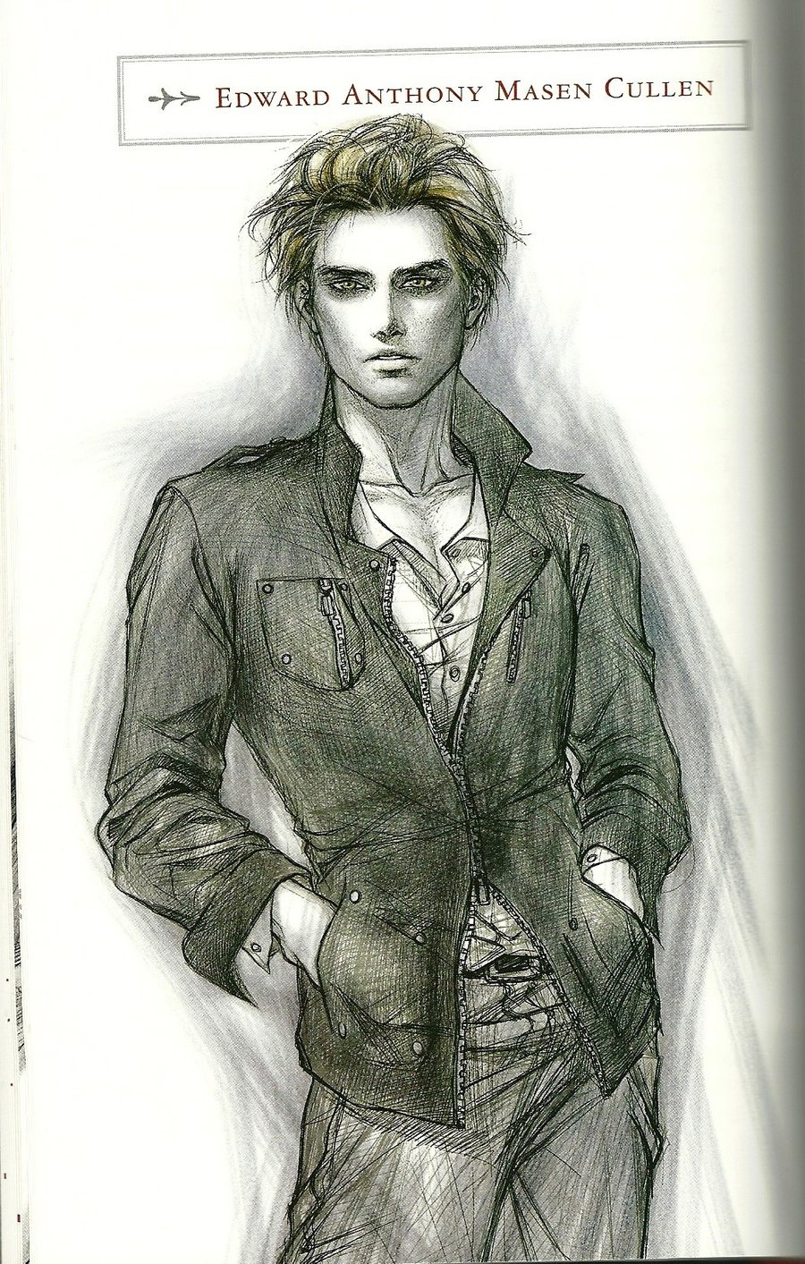 Twilight Series images Twilight Official Illustrated Guide HD wallpaper and  background photos
