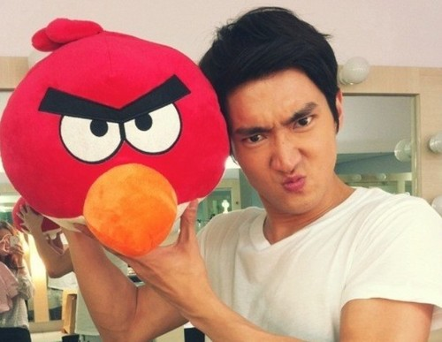 angrybird - si-won Photo