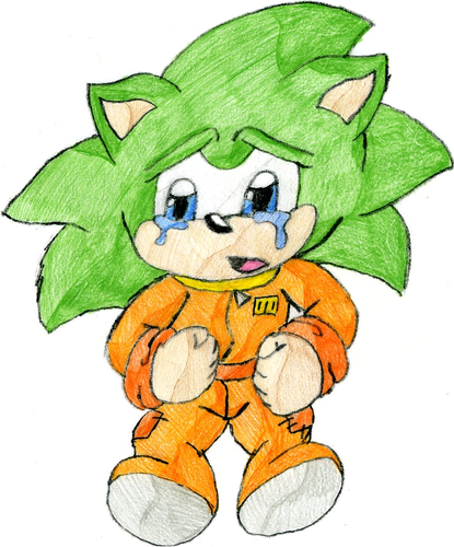 scar the hedgehog {i know...he looks like scourge..but thats the point}