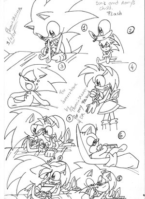sonic and amy's first child Flash