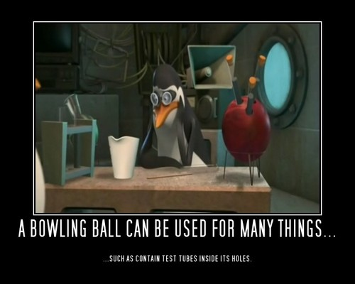 1000 Ways to Use a Bowling Ball