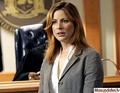 A.D.A. Casey Novak