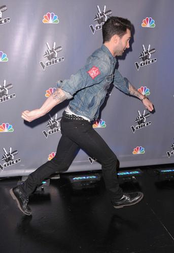 Adam Levine, The voice