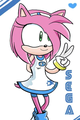 Amy - sonic-and-amy photo