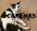 Cartman - fanpop-pets photo