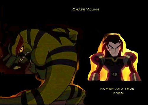 Chase Young's Forms
